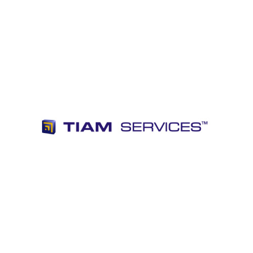 Tiam Services accounting and taxation services